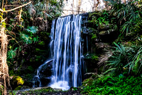 Rainbow Springs State Park - Dunnellon, FL - 02-01-16